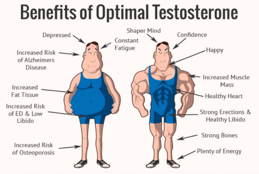 benefits of optimal testosterone - Pro Testosterone reviews 3 million dollars pills Does it realy works